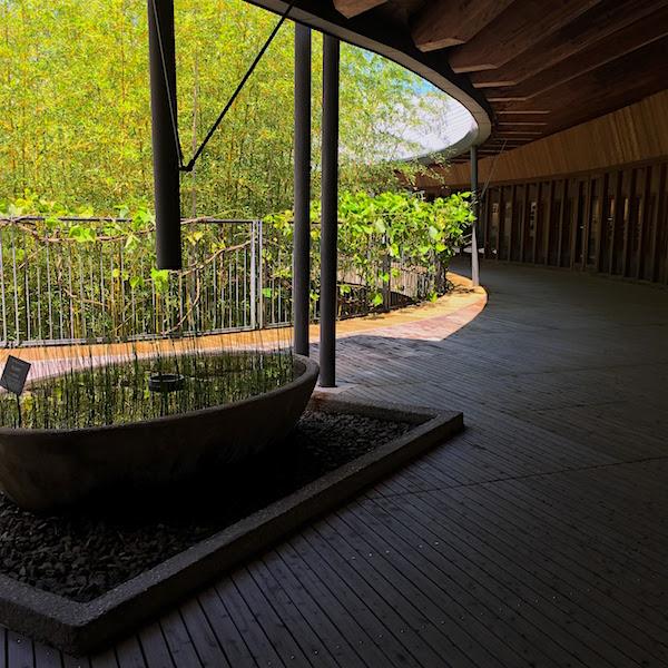牧野植物園建築2