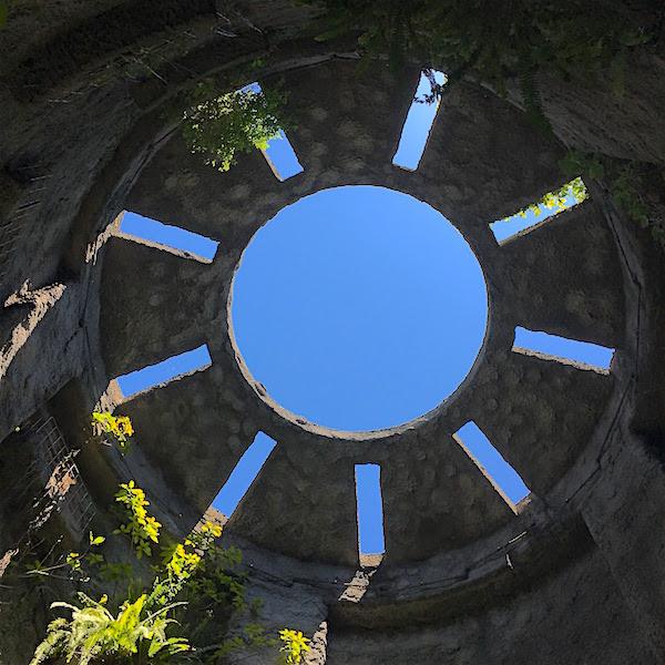 牧野植物園温室2